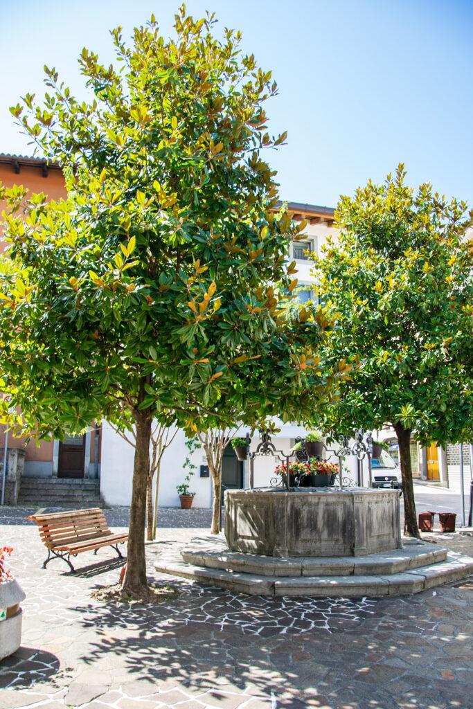 Fontana cinquecentesca in Piazza Cattaneo - San Daniele del Friuli