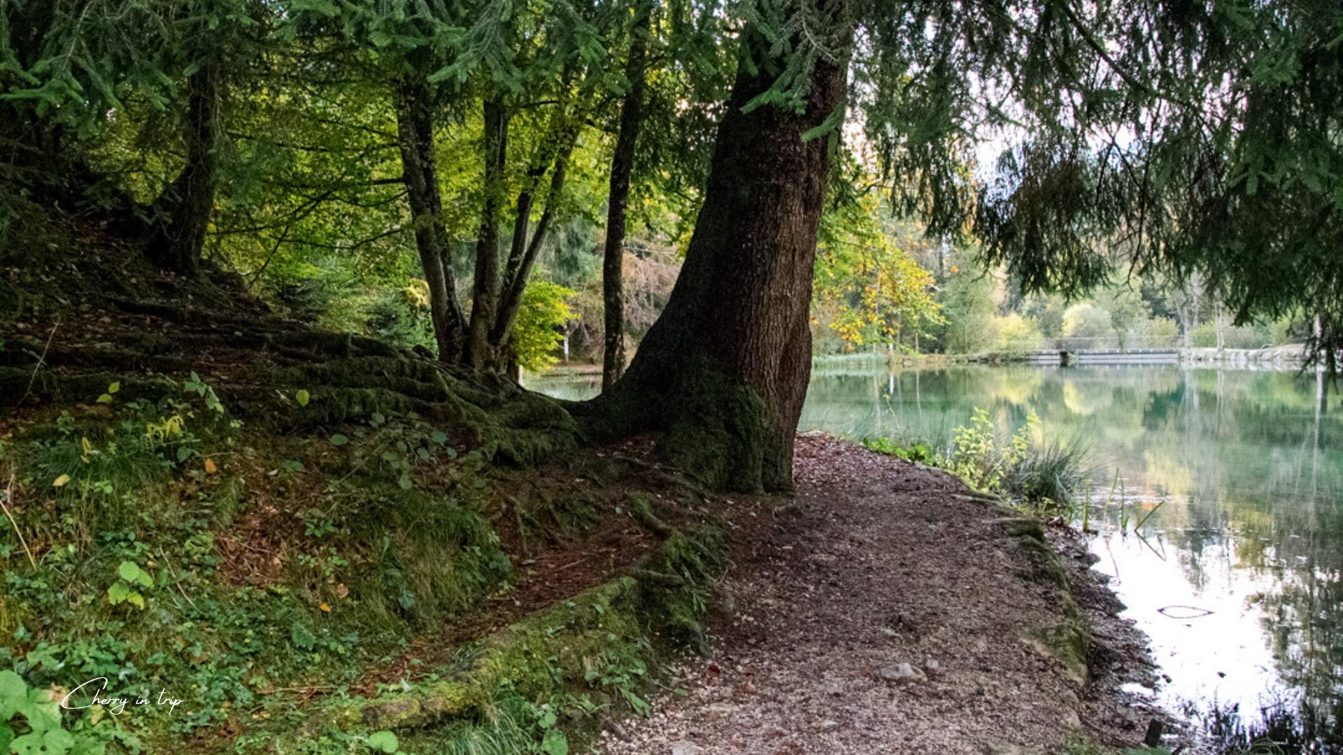 Percorso intorno al Lago Welsperg
