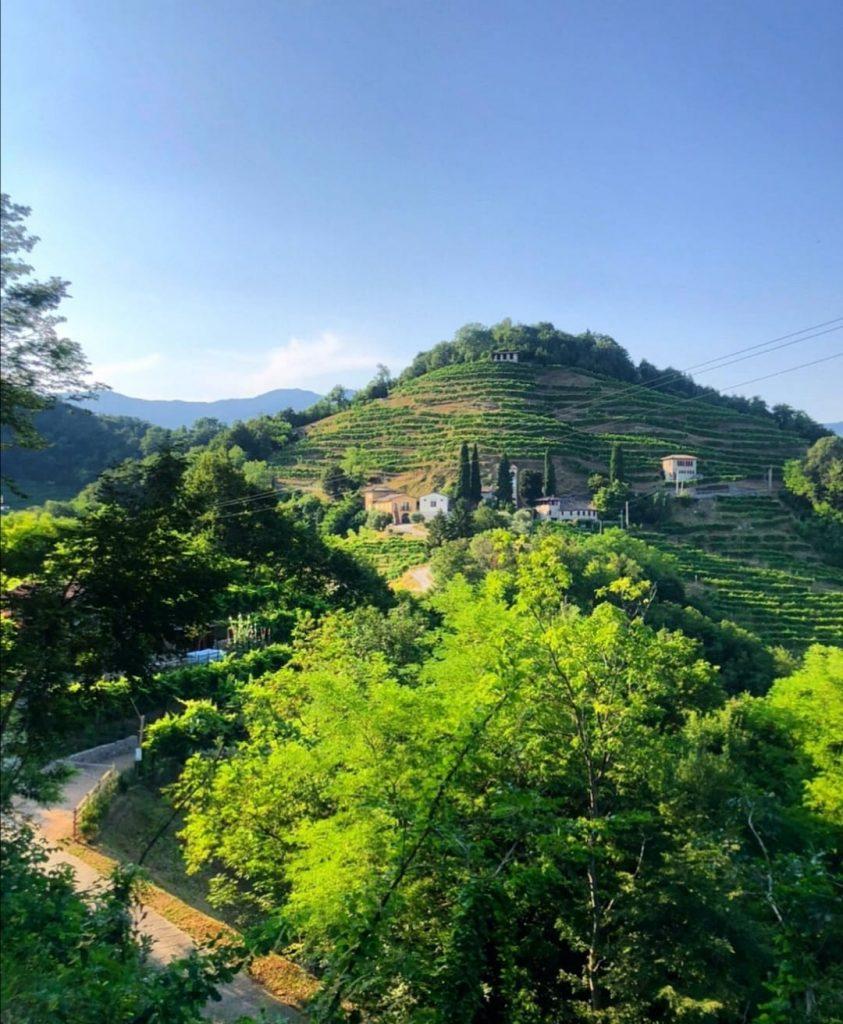 Colline del Prosecco (TV) - Veneto foto di @sui.colli.tour